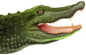 El TUE impide a competidores de Lacoste registrar formas de cocodrilo y caimán